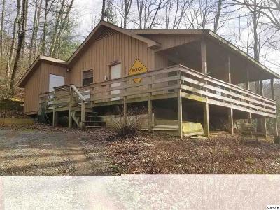 Sevierville Single Family Home For Sale: 2739 Covemont Rd