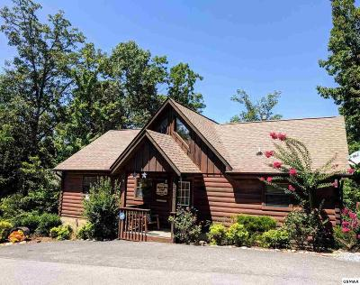 Sevierville Single Family Home For Sale: 1667 Raccoon Den Way