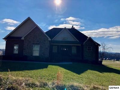 Kodak Single Family Home For Sale: 2655 Boston Chase Rd