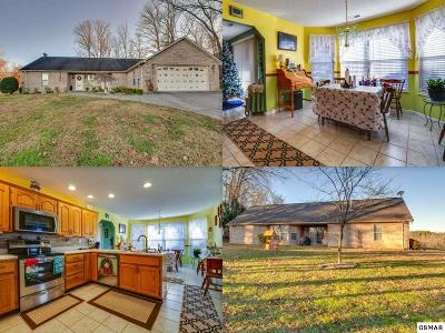 Sevierville TN Single Family Home For Sale: $239,999