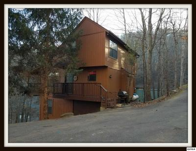 Gatlinburg Single Family Home For Sale: 814 Stans Road
