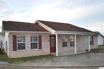 Sevier County Single Family Home For Sale: 1510 Country Place Way