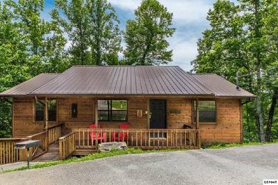 Sevierville Single Family Home For Sale: 2829 Ridgeway Trail