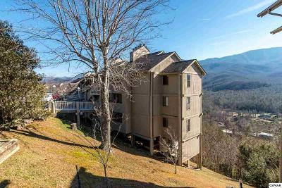 Gatlinburg Condo/Townhouse For Sale: 3710 Weber Rd #108-C