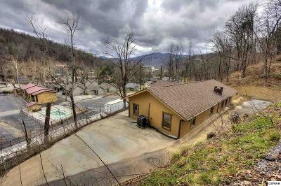 Gatlinburg Single Family Home For Sale: 133 Water Tower Rd