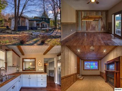 Gatlinburg Single Family Home For Sale: 4524 E Scenic Drive