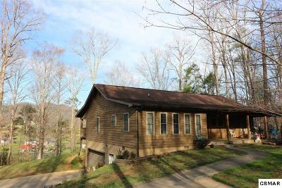 Sevierville Single Family Home For Sale: 4015 Roundtop Dr