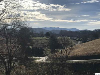 Sevierville Residential Lots & Land For Sale: Lot Lot Lot 2-R Tradition Lane