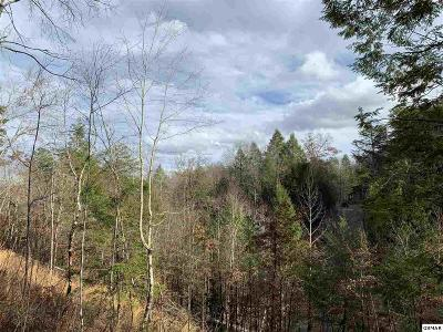 Pigeon Forge Residential Lots & Land For Sale: Lt 14 Brook Stone Way