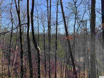 Pigeon Forge Residential Lots & Land For Sale: Lt 1d W Gold Dust Drive