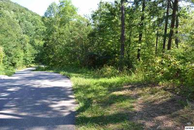 Sevierville Residential Lots & Land For Sale: Po Lot 21 Clabo Mountain Way