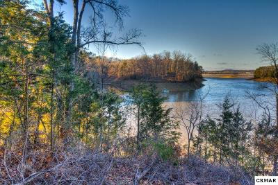 Sevierville Residential Lots & Land For Sale: Lot 24 Scott St