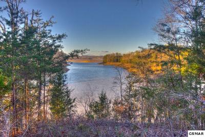 Sevierville Residential Lots & Land For Sale: Lot 25 Scott St