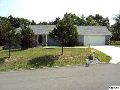 Sevierville TN Single Family Home For Sale: $225,000