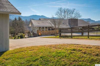 Sevierville Single Family Home For Sale: 1935 Valley Woods Dr