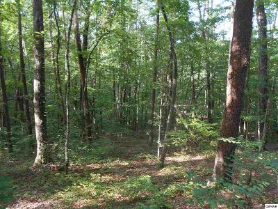 Sevierville Residential Lots & Land For Sale: Lot 68 Mountain View Rd