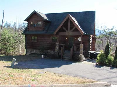 Sevierville Single Family Home For Sale: 3132 Mountain Grace