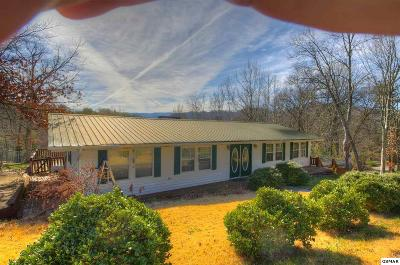 Pigeon Forge Single Family Home For Sale: 613 Sunnyview Dr