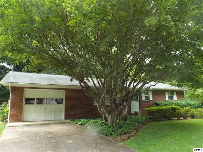 Sevier County Single Family Home For Sale: 2018 Center Road