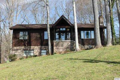 Knoxville Single Family Home For Sale: 828 Two Notch Dr