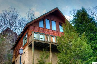 Sevier County Single Family Home For Sale: 4409 Forest Vista Way