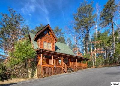 Sevierville Single Family Home For Sale: 2014 Bear Haven Way