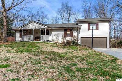 Seymour Single Family Home For Sale: 351 Fox Creek Rd.