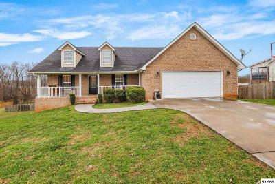 Sevierville TN Single Family Home For Sale: $224,900