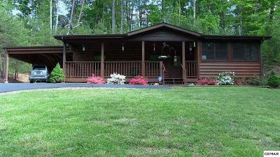 Sevier County Single Family Home For Sale: 1520 Alpine Dr