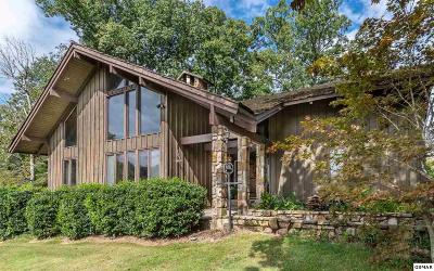 Sevier County Single Family Home For Sale: 413 Hicks Drive