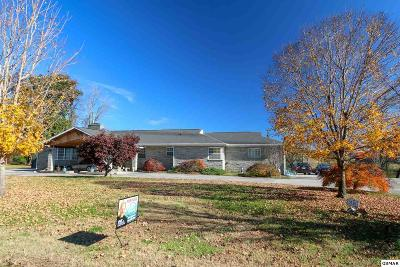 Knoxville Single Family Home For Sale: 1536 Cliffside Ln
