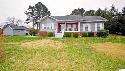 Sevierville Single Family Home For Sale: 237 E Hardin Ln