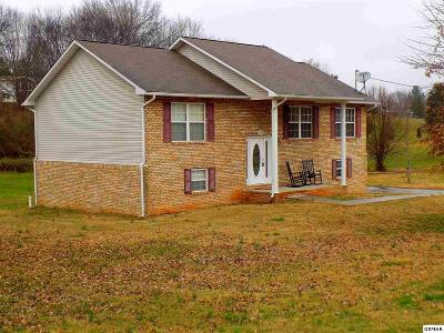 Sevier County Single Family Home For Sale: 502 Academy Drive