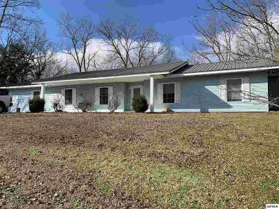 Sevierville Single Family Home For Sale: 231 Alexanderia St