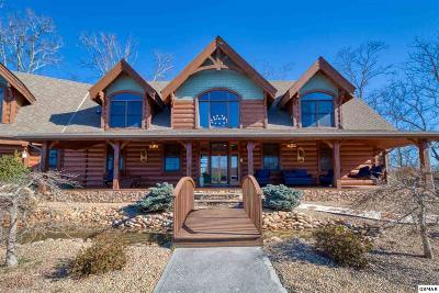 Pigeon Forge Single Family Home For Sale: 325 Alpine Mtn Way