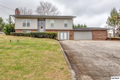 Kodak Single Family Home For Sale: 228 Ironwood Dr