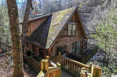 Sevierville Single Family Home For Sale: 1563 Grant Rd