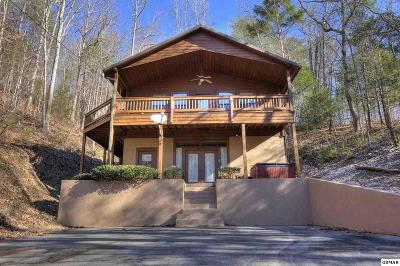 Sevierville Single Family Home For Sale: 3535 Birds Creek Rd.