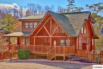 Sevierville Single Family Home For Sale: 1909 Creek Overlook Way