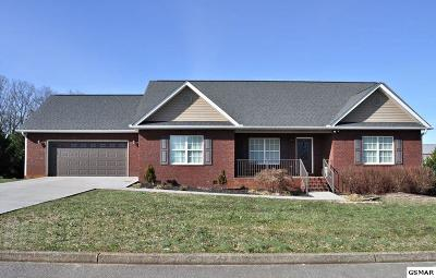 Sevierville Single Family Home For Sale: 1438 Benjamin Blvd