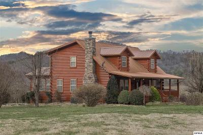 Sevierville Single Family Home For Sale: 3480 Valleydale Way
