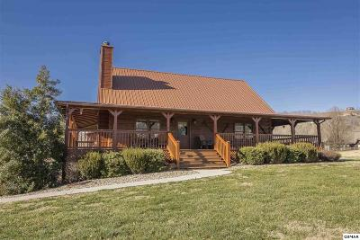 Sevierville Single Family Home For Sale: 3509 Autumn Woods Ln
