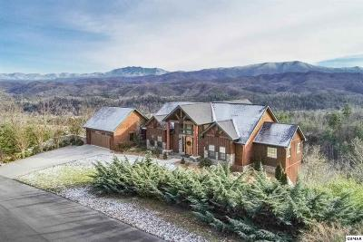 Sevierville Single Family Home For Sale: 3060 Misty Bluff