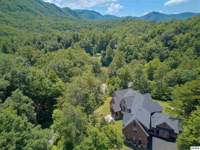Sevierville Single Family Home For Sale: 419 Mountain View Road
