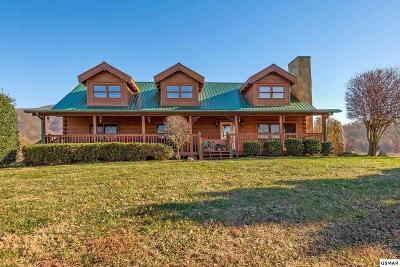 Sevierville Single Family Home For Sale: 3114 J.h. Headrick