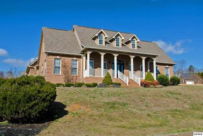 Sevierville Single Family Home For Sale: 1804 Placid Dr.