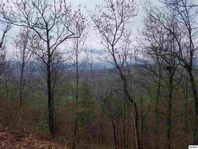 Gatlinburg TN Residential Lots & Land For Sale: $99,900