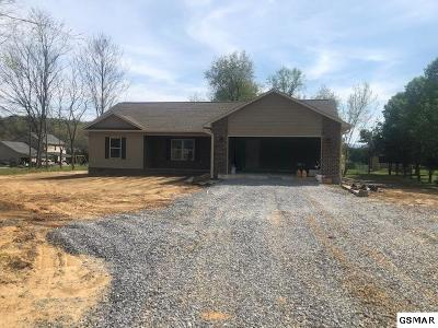 Sevierville Single Family Home For Sale: 3124 Lazy River Lane