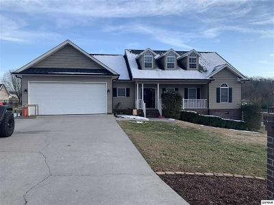 Sevierville Single Family Home For Sale: 1934 River Vista Circle