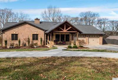 Sevier County Single Family Home For Sale: 1024 Pullen Rd